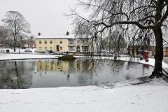 Norton Duck Pond in Winter