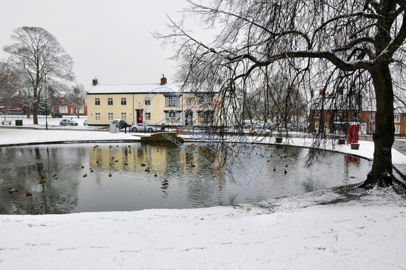Norton Duck Pond in Winter